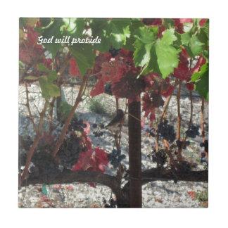 Bird among Grapes on Vine in Vineyard Tile