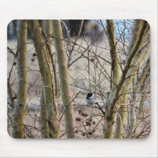 Bird Among Trees Mouse Pad