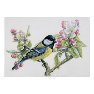 Bird and Apple Blossom Poster