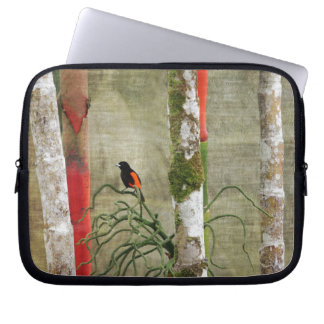 Bird and Bamboo Costa Rica.jpg Laptop Computer Sleeves
