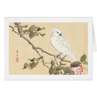 Bird and Flower Album, Cockatoo and Camellia Card