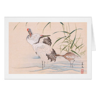 Bird and Flower Album, Wading Cranes vintage art Stationery Note Card