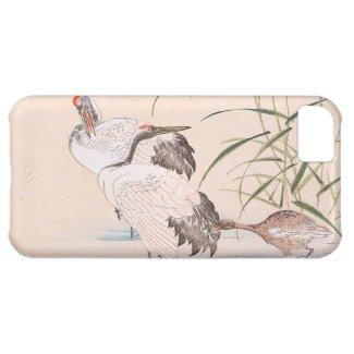 Bird and Flower Album, Wading Cranes vintage art iPhone 5C Cases