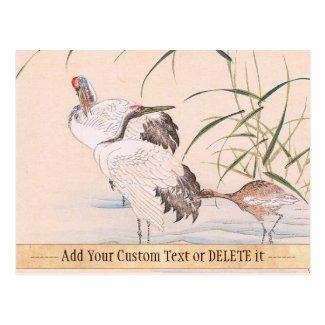 Bird and Flower Album, Wading Cranes vintage art Postcards