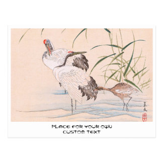 Bird and Flower Album, Wading Cranes vintage art Postcard