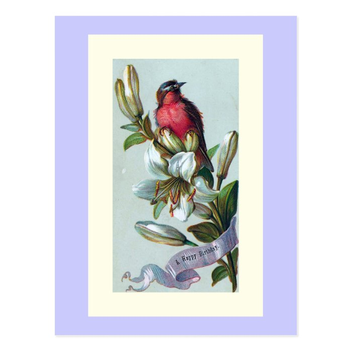 """""""Bird and Lily"""" Postcard"""