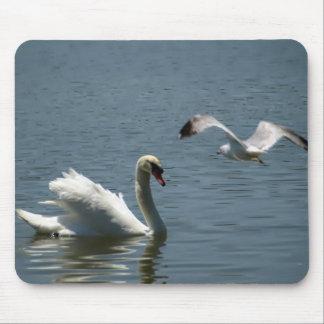 Bird and Swan Over Lake Morton Mouse Pad