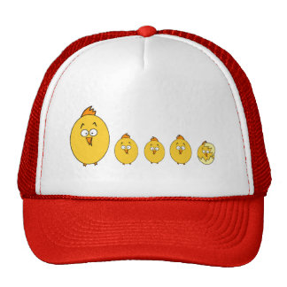 Bird and trucker hat