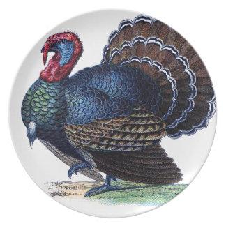 Bird Animal Holiday Feathers Turkey Vintage Melamine Plate
