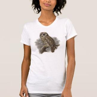 Bird Art 9 - Owl Tees
