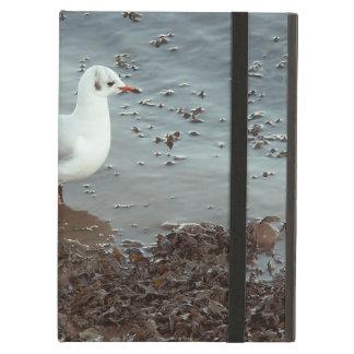 Bird at Water Edge. Black Headed Gull. iPad Folio Case
