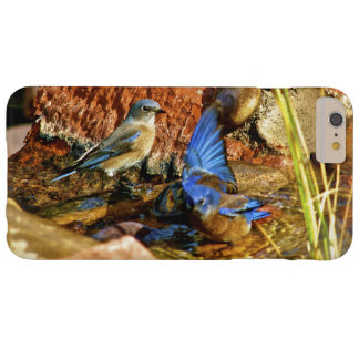 bird bath barely there iPhone 6 plus case