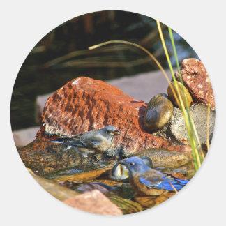 bird bath classic round sticker