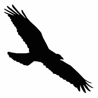 Bird - Bird (01) Statuette