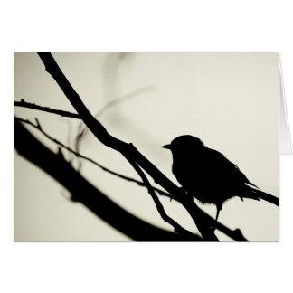 bird black and white photograph card