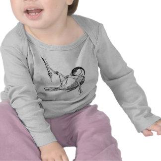 Bird / Black-Capped Chickadee T Shirt