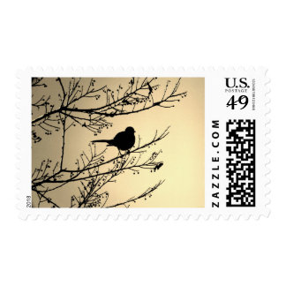 """Bird Black"" JTG Art Postage Stamp"