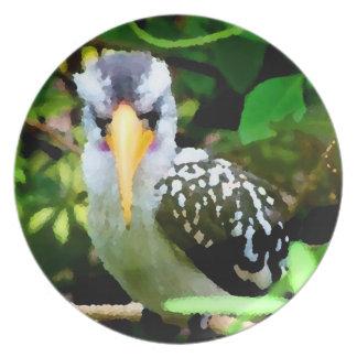 bird black white yellow beak against green painted dinner plate