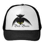 Bird Brain Crow Hat