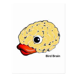 Bird Brain Postcard