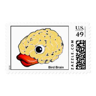 Bird Brain Stamps