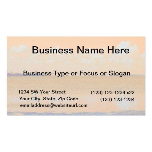 Bird Bridge Orange Blue River Florida Double-Sided Standard Business Cards (Pack Of 100)