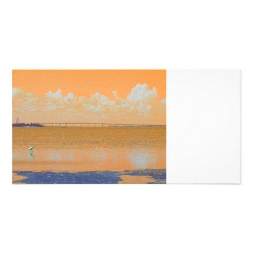 Bird Bridge Orange Blue River Florida Photo Card