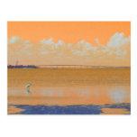 Bird Bridge Orange Blue River Florida Post Cards