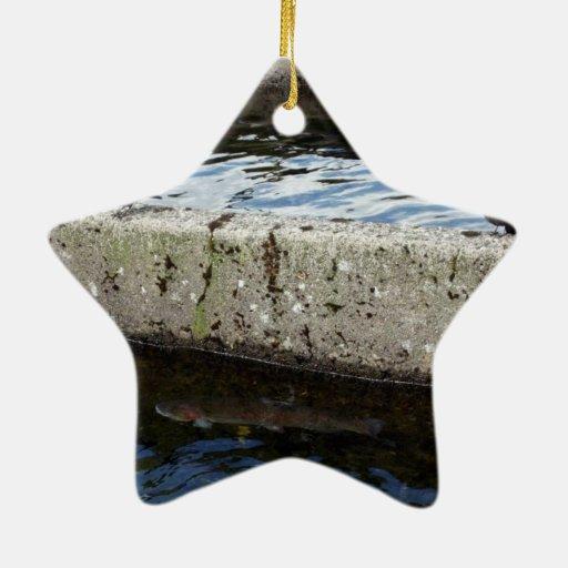 Bird Bridge Double-Sided Star Ceramic Christmas Ornament