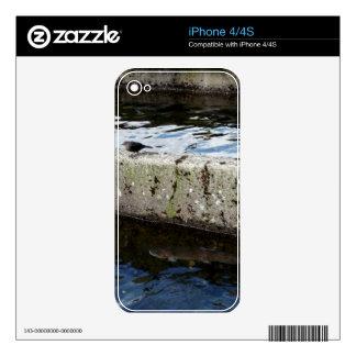 Bird Bridge Skins For iPhone 4