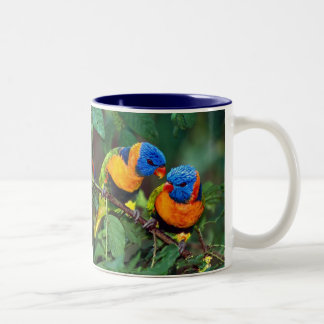 Bird Buddies Two-Tone Coffee Mug