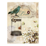 Bird cage Vintage floral  Paris fashion Postcards