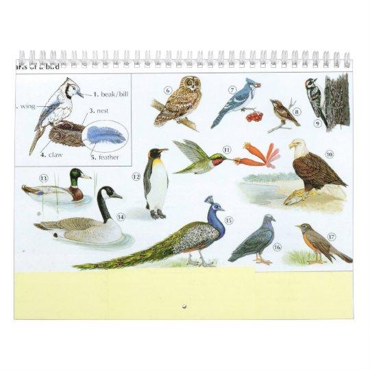 Bird Calender 1 Calendar
