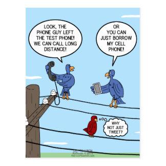 Bird Calls Postcard