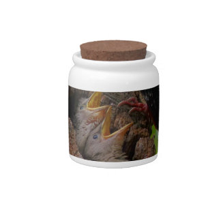 bird candy jar