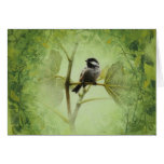 Bird Card by Andrew Denman