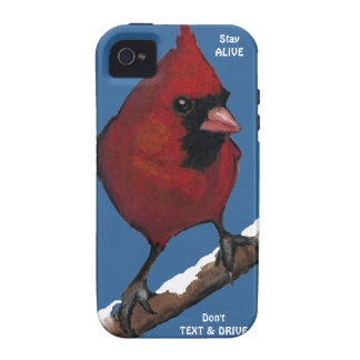 Bird Cardinal Don t Text Drive Stay Alive iPhone 4/4S Cover