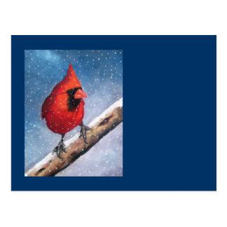 BIRD: CARDINAL: SNOW: OIL PASTEL ART POSTCARD