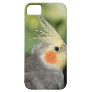Bird iPhone 5 Case