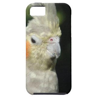 Bird iPhone 5 Cases