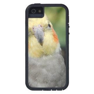Bird iPhone 5 Covers