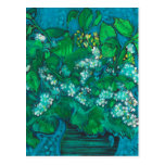 Bird Cherry Flowers Blossom Floral Pastel Painting Postcard