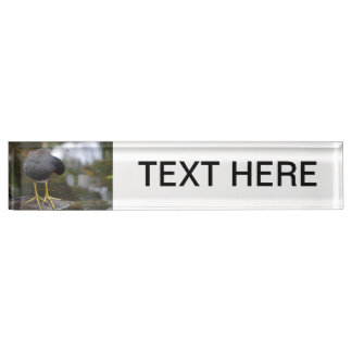 bird cleaning itself yellow feet picture desk name plate