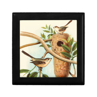 Bird Couple on a Nest Perched on a Branch Gift Box