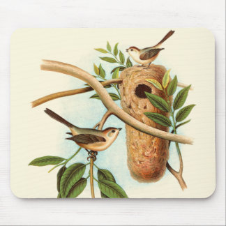 Bird Couple on a Nest Perched on a Branch Mouse Pad