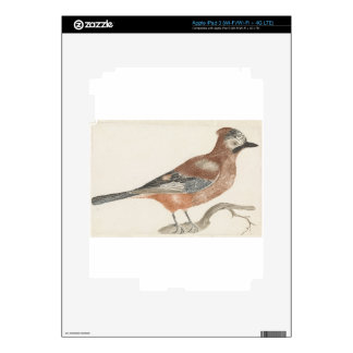 Bird Decal For iPad 3