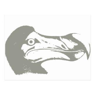 Bird Dodô Postcard