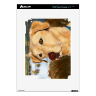 Bird Dog Decal For iPad 3