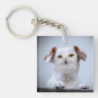 Bird Dog Keychain