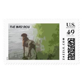 Bird Dog Postage